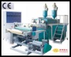 TL-500-55*2 two layer Co-extrusion Stretch film machine