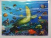 2013 latest 3D pictures of sea animals for home decoration with PEP PP PS