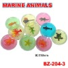 Sell Crystal Putty With Marine Animals Toys
