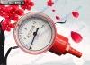 Biogas Pressure Meter