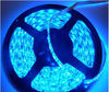 led ribbon blue 12v for Christmas lighting