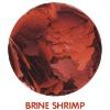 Brine Shrimp Flake