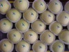 Golden delicious apple(2010 new crop)