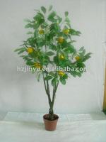 Simulation lemon tree