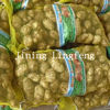 supply our best quality taro( 2012 fresh)