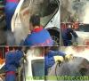 14bar Steam Car Detailing