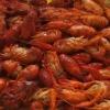 cooked whole crayfish unseasoned/seasoned