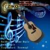 musical instrument acoustic guitar