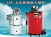Quick start steam generator boiler (oil and gas)