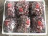 2012 Chinese fresh red grape