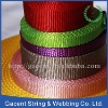 100% nylon webbing for dog leash