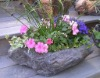stone and rock planter