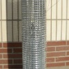 High Quality Galvanized & PVC Coated Wire Mesh (huaming factory)