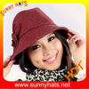 2013 Hot Woolen hats for lady