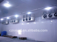 ceiling cooler