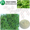 Top Quality Gypenosides 40%-98%