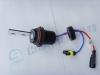HID Lamp (9007)