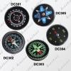 DC30  compass