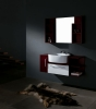 Bathroom  Cabinet WSC-5003