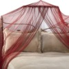 Double mosquito net and bed canopy