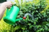 2L PLASTIC WATERING CAN