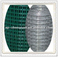 PVC Coated/Hot Dipped Galvanized Welded Wire Mesh