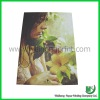 Poster Printing Service (Manufacturer)