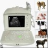 MA21355 Veterinary Portable B Ultrasound Scanner