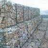 gabion mesh box factory the lowest price
