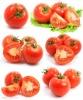 Tomato Paste cold break