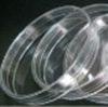 Petri dish (i.d.90mm),labware, High quality products