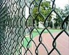 PVC Coated Chain Link Wire Mesh Fence in China