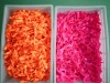 Wholesale Ponytail Elastic Ties/Bands with Knots