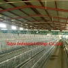 TAIYU battery cages (Nigerian /Lagos office,For birds in sales)