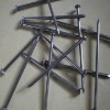 polished or galvanized Common Iron Nails ( ISO9001,factory, China)