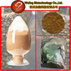 wholesale organic food ganoderma ultrafine powder