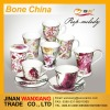 Ceramic bone china dinner sets with decal