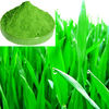 green Barley grass juice powder
