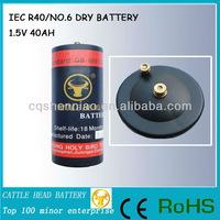 1.5 VOLT starter battery