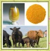 feed additive corn gluten meal
