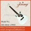 acoustic guitar manufacturer