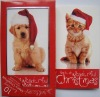 cartoon dogs & cats christmas card