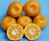 Juice material orange concentrate /sacs /pulp /puree