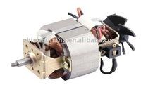 Juicer Motor