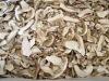 wild dried boletus edulis