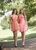 New Arrival Short Pink Affordable Bridesmaid Dresses (ABG245)