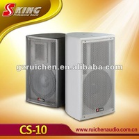 Professional conference wall speaker