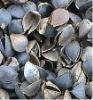 Raw buckwheat hull