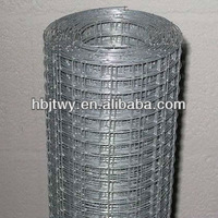 Galvanized Welded Wire Mesh by wholesale