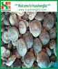 organic frozen quarter shiitake mushroom